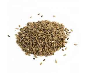 Семена Расторопши (отборные), на вес