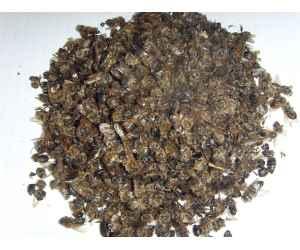 Подмор пчелиный, (на вес)